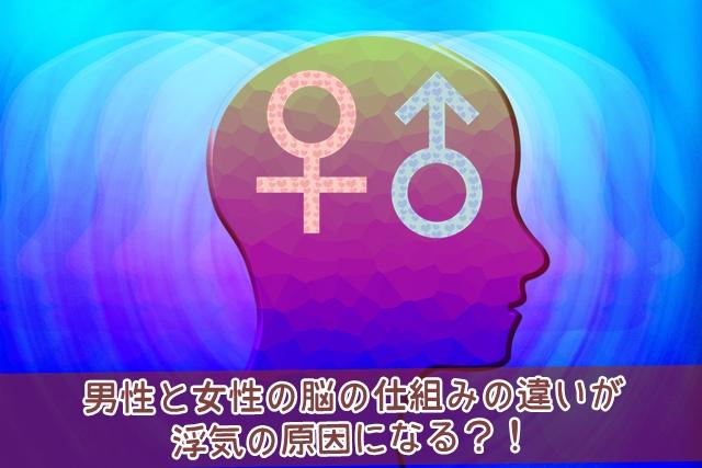 男性と女性の脳の仕組みの違いが浮気の原因